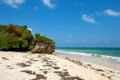 Strand och tropiskt hav royaltyfri foto