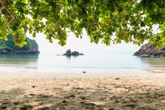Strand och tropiskt hav, under trädet Arkivbilder
