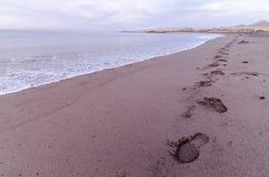 Strand och våg på soluppgång Tid Fotografering för Bildbyråer