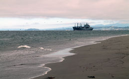 Strand och vågor med fraktbåten i avståndet Royaltyfri Foto