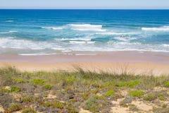 Strand och vegetation i Almograve Arkivfoto