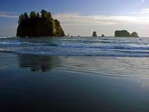 Strand, olympischer Nationalpark Stockfoto