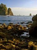 Strand, olympischer Nationalpark Lizenzfreie Stockbilder