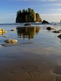 Strand, olympischer Nationalpark Stockfotografie