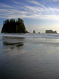 Strand, olympischer Nationalpark Lizenzfreie Stockfotos