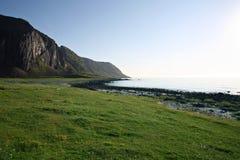 Strand op de Lofoten-eilanden Royalty-vrije Stock Fotografie
