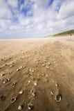 Strand op een regenachtige en winderige dag Royalty-vrije Stock Foto