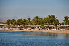 Strand op het rode overzees Stock Afbeelding