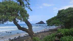 Strand op Maui Royalty-vrije Stock Foto's