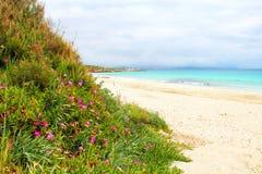 Strand op Sardinige, Italië stock fotografie