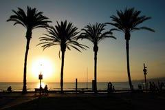 Strand op Tenerife, Kanarie, Spanje, Europa Royalty-vrije Stock Foto