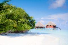 Strand op tropisch eiland Stock Afbeelding