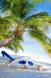 Strand op tropisch eiland Stock Foto
