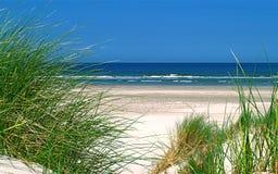 Strand op Wadden eiland stock afbeeldingen