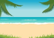 Strand, overzees, golven, palmen Royalty-vrije Stock Foto