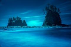 Strand overzeese stapels met bomen Stock Afbeeldingen