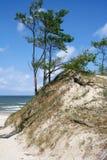 Strand på Östersjön, Polen royaltyfri fotografi