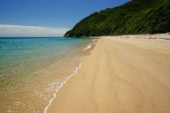 Strand på Abel Tasman National Park i Nya Zeeland Fotografering för Bildbyråer