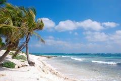 Strand på Akumal, Yucatan Arkivbild