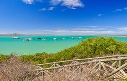 Strand på den Langebaan lagun - västkustennationalpark, Sydafrika Fotografering för Bildbyråer