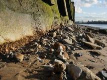 Strand på flodThemsen Arkivfoto