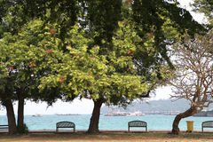 Strand på khoasichang Arkivbild