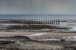 Strand på lågvatten med väderkvarnar Royaltyfri Bild