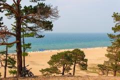 Strand på Lake Baikal royaltyfri fotografi