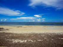 Strand på Mombasa, Kenya royaltyfri foto