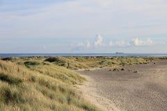 Strand på Nordsjönkust Royaltyfria Bilder