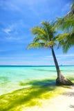 Strand på sommar Arkivfoton