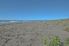 Strand på Stillahavskusten i nordliga Kalifornien Arkivbild