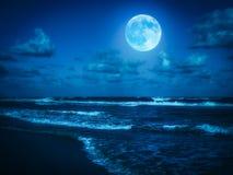 Strand på midnatt med en fullmåne Royaltyfri Foto
