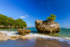 Strand Padang Padang - Bali Indonesien Stockbilder
