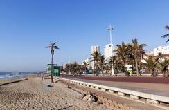 Strand-Palmen und Promenade gegen Stadt-Skyline Stockbilder