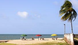 Strand Pititinga (RN, Brasilien) mit Strandschirmen Stockfotos