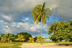 Strand Rancho Luna, Cienfuegos in Kuba stockbilder