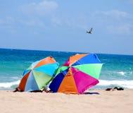 Strand-Regenschirme auf dem karibischen Ufer Lizenzfreie Stockbilder