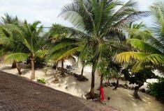 Strand rond Coba stock afbeeldingen