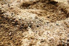 Strand-Sand Stockfoto