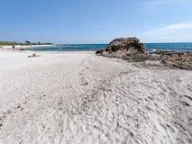 Strand Sardinien Italien Bidda Rosa Lizenzfreies Stockfoto
