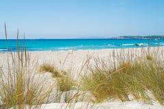 Strand in Sardinige Stock Fotografie