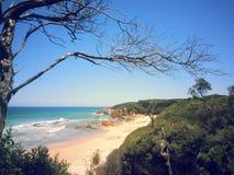 Strand scape stockbild