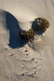 Strand-Schätze Stockbild