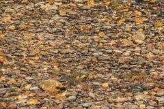 Strand scherpe kiezelstenen Stock Foto