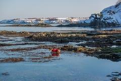 Strand Schwarzen Meers im Winter Lizenzfreies Stockfoto