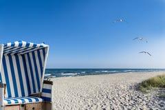 Strand, seagulls och en strandstol Arkivfoton