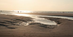 Strand in sepia Stock Afbeeldingen