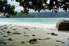Strand in Seychellen-Inseln lizenzfreie stockbilder