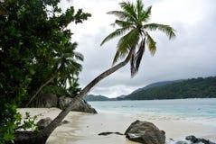 Strand in Seychellen-Inseln lizenzfreies stockfoto